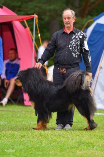 Rahvusvaheline koertenäitus Balti Võitja 2021. Kohtunik Lazlo Erdös (Ungari), GangriNorbu Om Arya, tšempion klass SP, SK, III koht, PE3